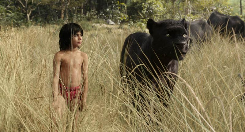 The-jungle-book-film-2016